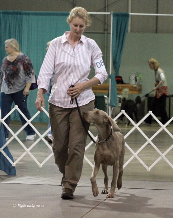 Electra - Heeling - Nationals
